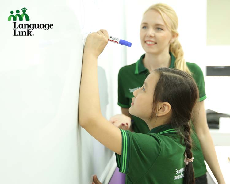 Roles and responsibilities of a teacher at Language Link Vietnam